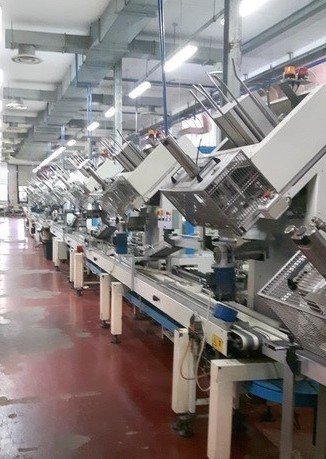 Cake Production Line with Capacity 70,000 Sponge Cakes/Hour