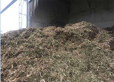 4000 KW BIOMASS POWER PLANT